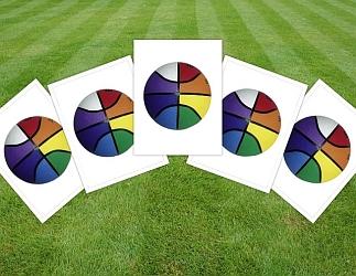 Set van 5 regenboog basketballen